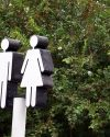Read more about the article Putting A Gender Lens on COVID-19
